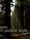 VISIONTECH PICTURE STYLE ****